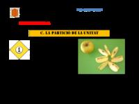 16_17_Full de treball C_La partició de la unitat.pdf