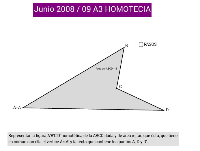 HOMOTECIA 5 (PAU 2008/09)