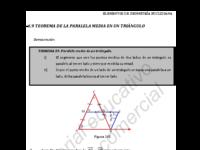 segmento medio.pdf