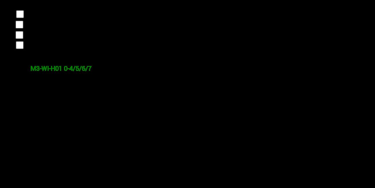M3 WI H01 0-4-5-6-7