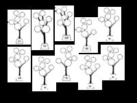 Sheet vẽ khu rừng bằng phân tích ra thừa số nguyên tố.pdf
