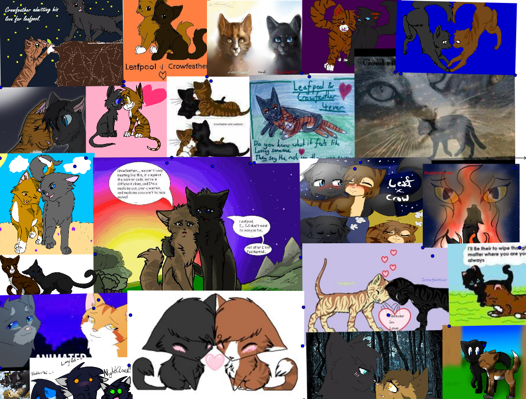 Leafpool and Crowfeather Collage
