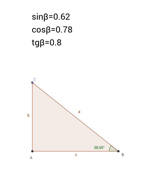 Le funzioni goniometriche definite sul triangolo rettangolo.