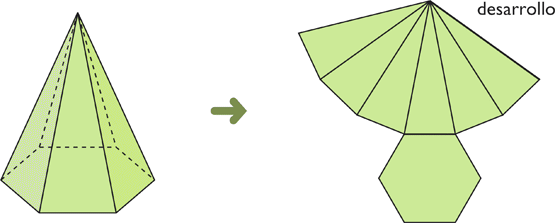 Desarrollo de la pirámide
