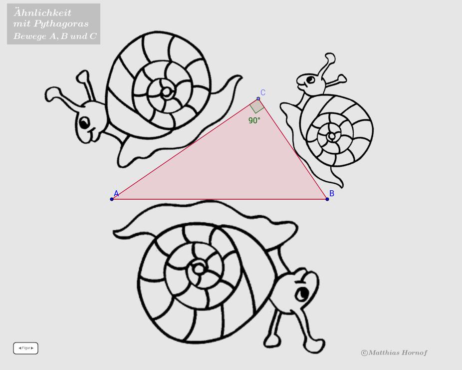 Ähnlichkeit und Pythagoras