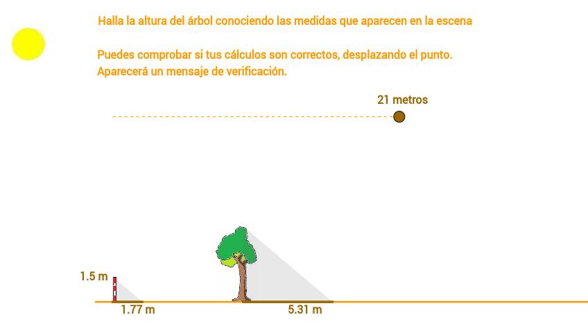 Aplicación del teorema de Thales: altura de un árbol