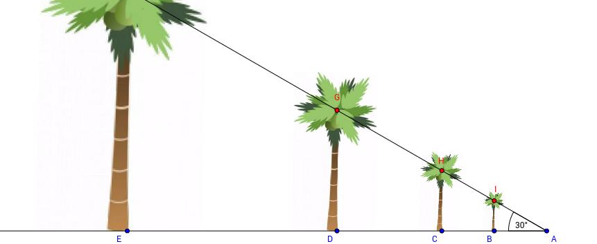 Introducción a las razones trigonométricas