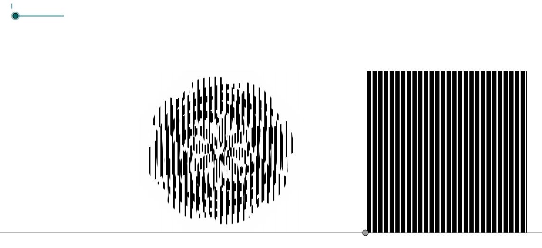 Illusioni ottiche: scanimations