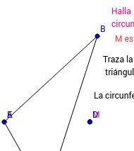 Circuncripta