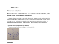 Matikkasirkus_säännöt.pdf