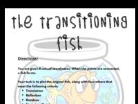 Fish Activity-Instructions.pdf
