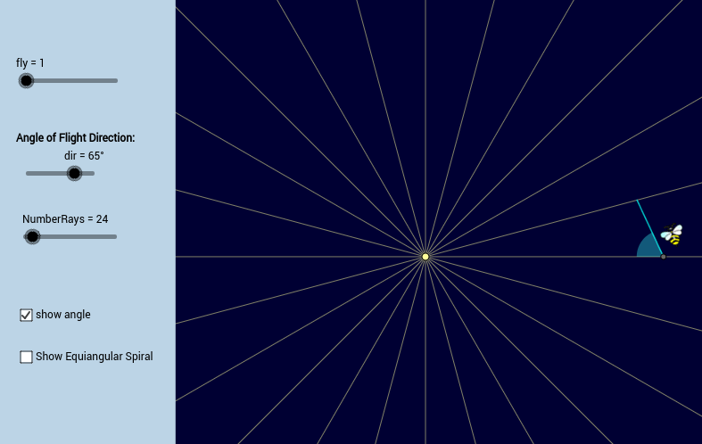Flight of an Insect - Radial Source of Light