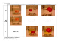 prova de densitat.pdf