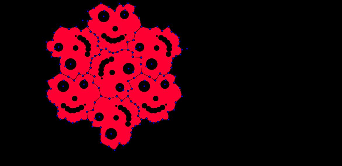 Hexagon13