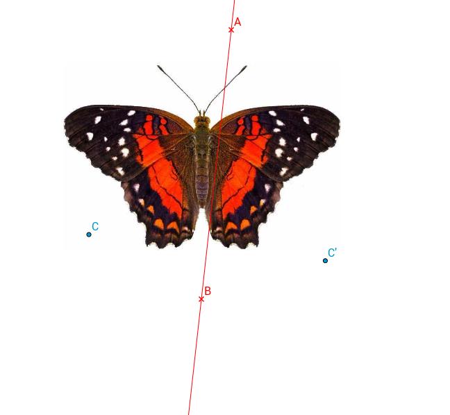 Achsensymmetrie entdecken