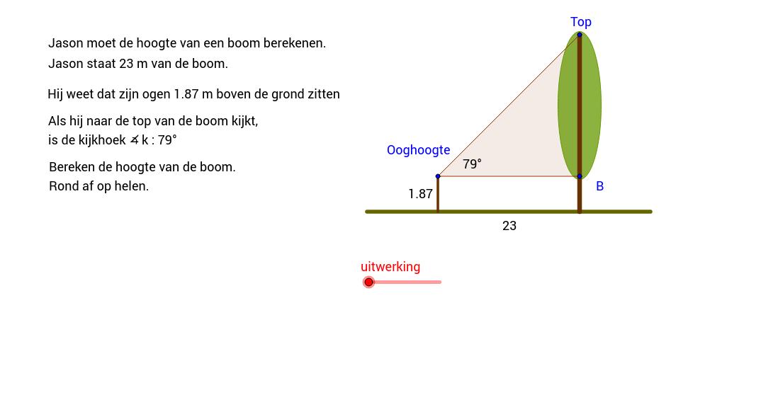 Kijkhoek en tangens inzetten voor lengte boom.
