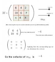 Cofactors of a Matrix