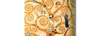 Les espirals de Klimt