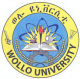 GeoGebra Institute of Wollo